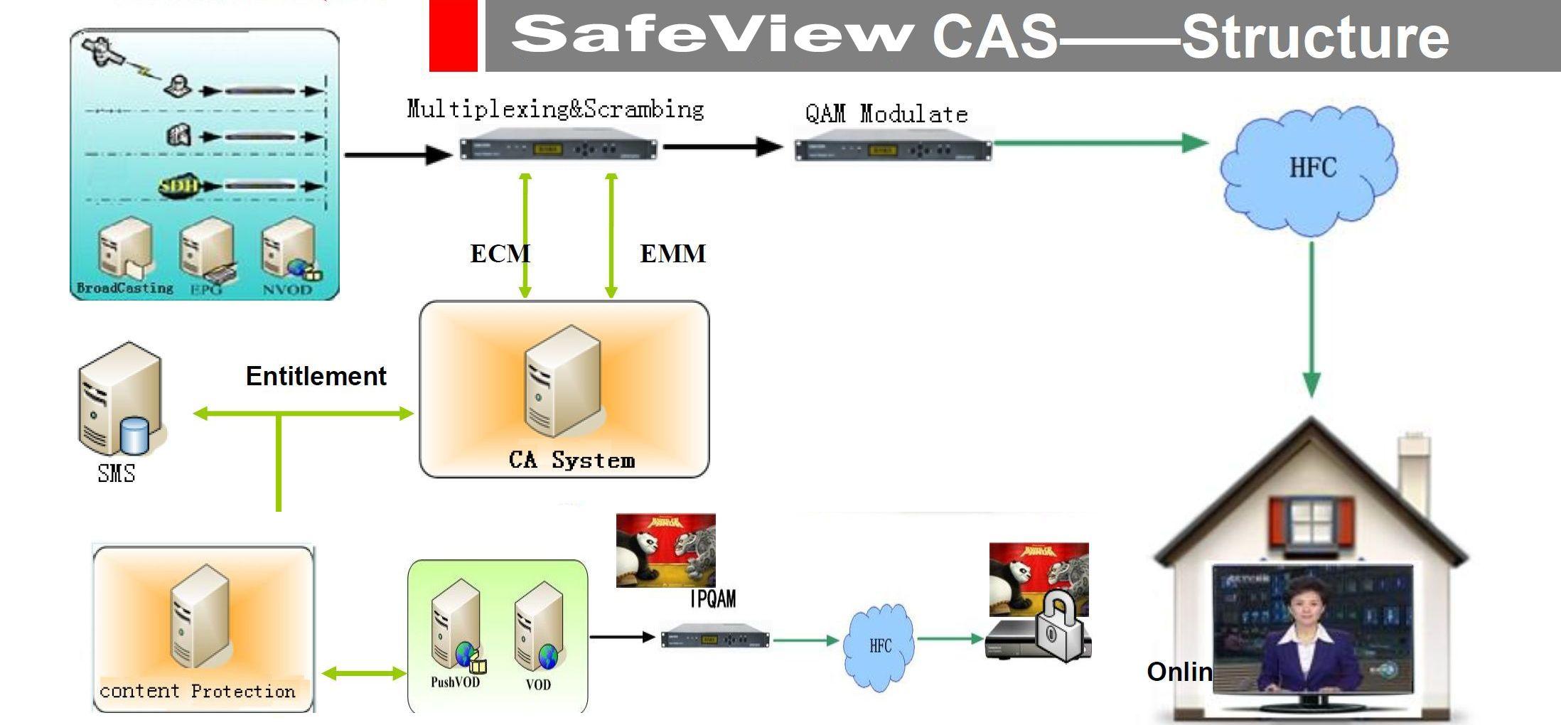 Структура системы услвоного доступа SafeView CAS