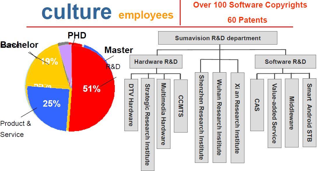 Структура  компании Sumavision